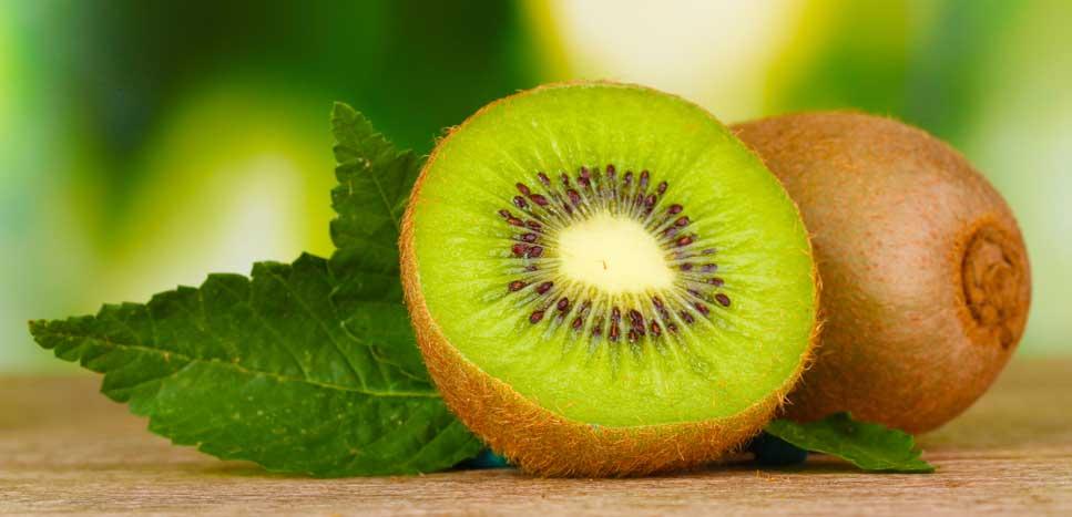 Киви фрукт: история, свойства, выращивание