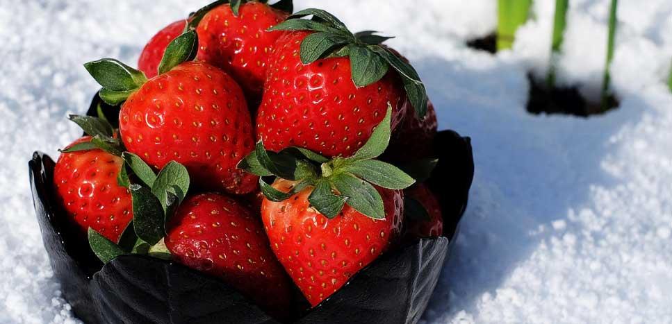 Как укрыть клубнику на зиму